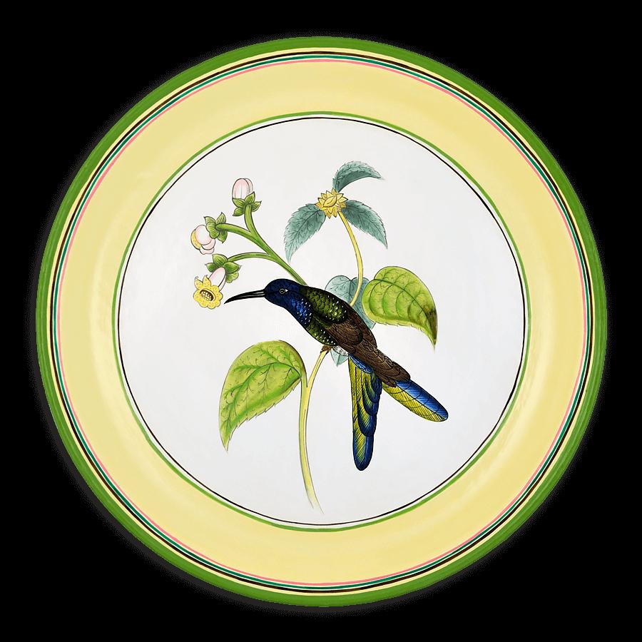 TOL-107 Hummingbird