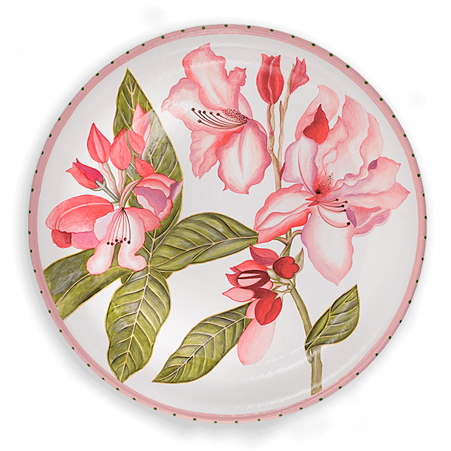 TOL-26 Rhododendron